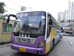 江華行きバス
