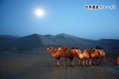 月と砂漠とラクダ
