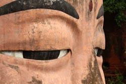 楽山大仏の目