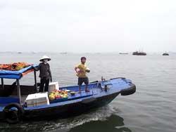 ハロン湾遊覧船