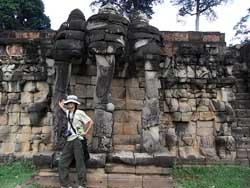 象のテラス
