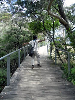 Furber steps