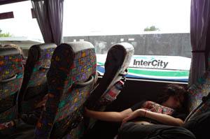 ウェリントン行きバス