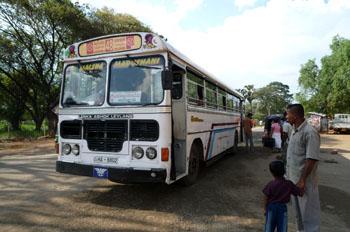 ポロンナルワ バス