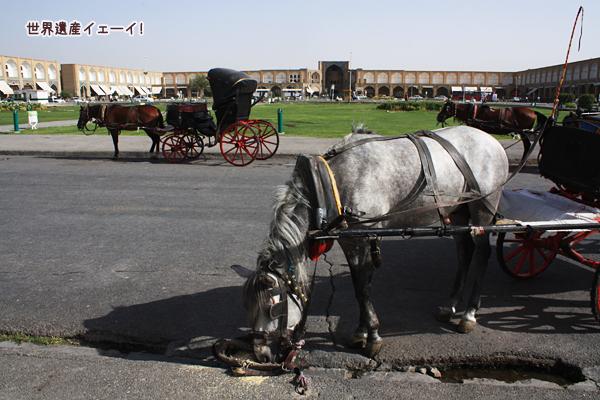 イマーム広場馬車