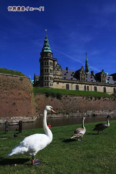 クロンボー城と白鳥
