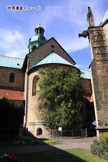 聖マリア大聖堂キリストの円柱1000歳のバラの木