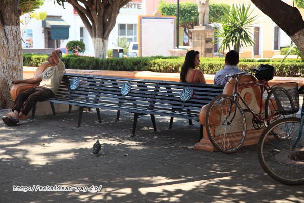 テキーラ町のベンチ